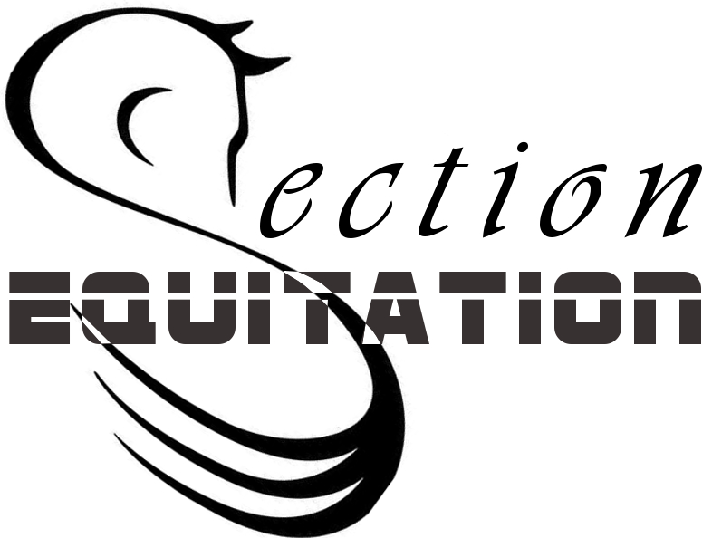 Section EQUITATION logo